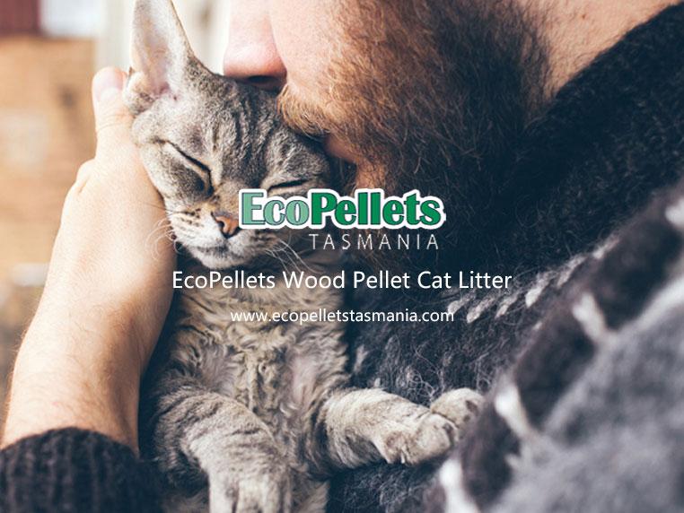 wood pellet cat litter